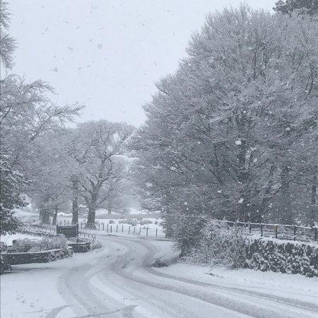 Borrowdale, UK: photo0.jpg