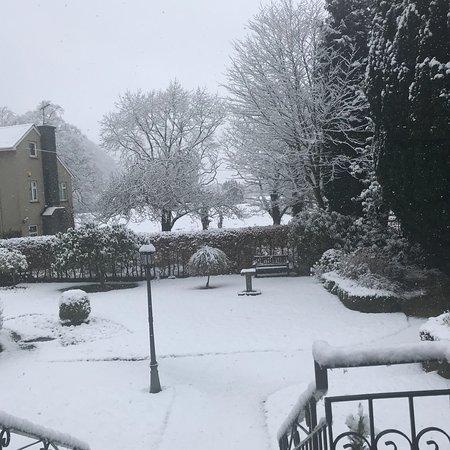 Borrowdale, UK: photo1.jpg