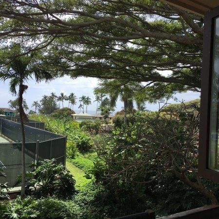 Kalapaki Joe's Poipu: Great view and open air dinning