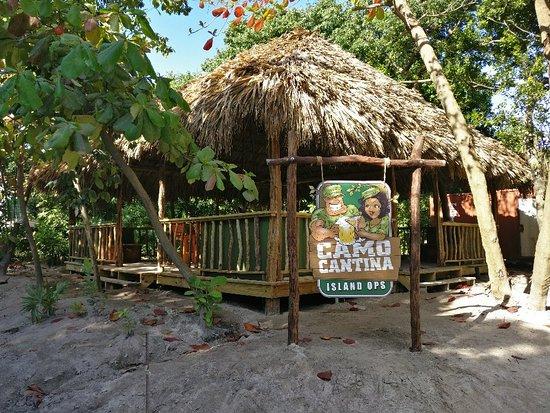Camo Cantina San Pedro Restaurant Reviews Photos