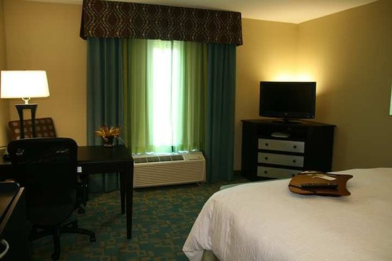 Hampton Inn & Suites Beach Boulevard/Mayo Clinic Area: Guest room