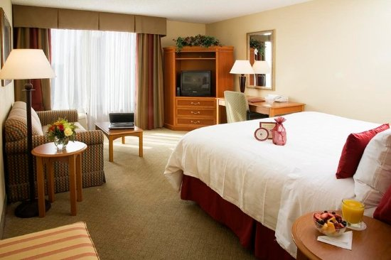 Crowne plaza fort myers at bell tower shops updated 2018 for Rooms to go kids fort myers