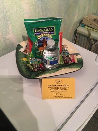 جاردن أيلاند إن: complimentary snacks