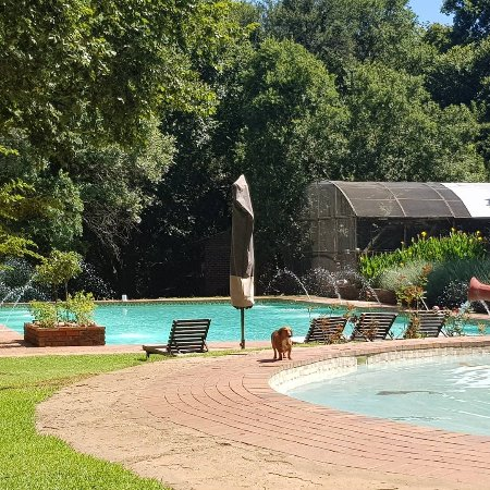 Magaliesburg, Südafrika: IMG_20180212_102057_757_large.jpg