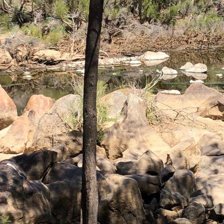 Bullsbrook, Australia: photo0.jpg