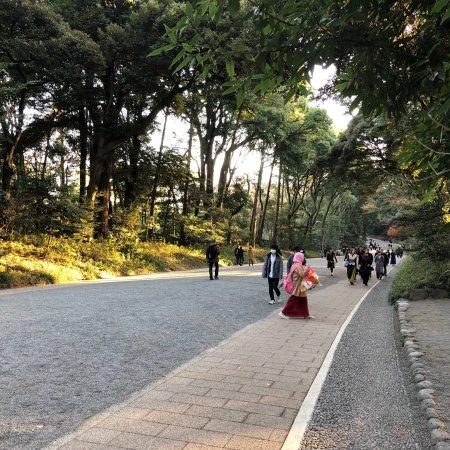 Yoyogi Park: photo2.jpg