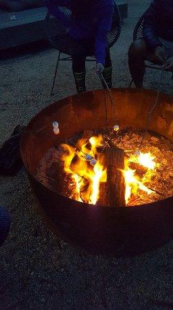 Bay of Fires Bush Retreat: 20180213_203531_large.jpg