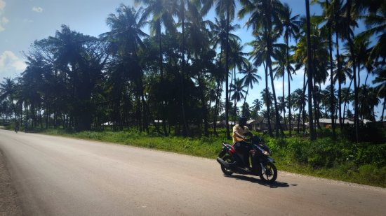 Cheapi Piki-piki