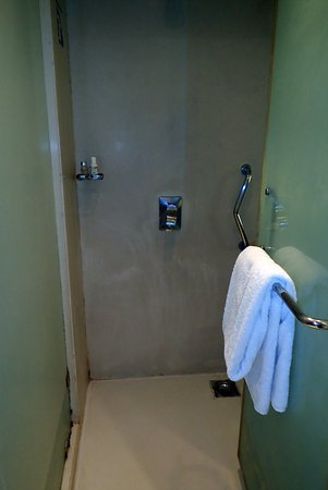The Pride Hotel: Bathroom with moldy shower