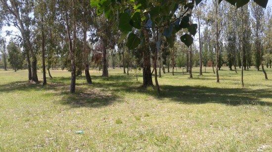 Parque Juan Domingo Peron