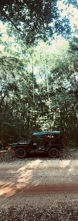 Phu Quoc Jeep Tour: Jeep in the jungle