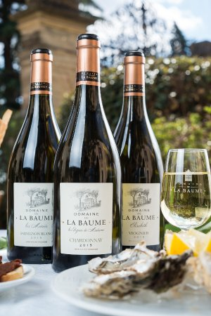 Servian, Frankreich: Des Vins Frais et fruités - Sauvignon Blanc, Chardonnay, Viognier . . .