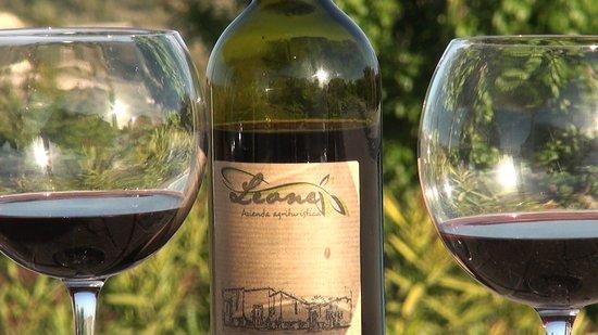 Vino Cabernet Sauvignon: vino di carattere all'Agriturismo Leone.