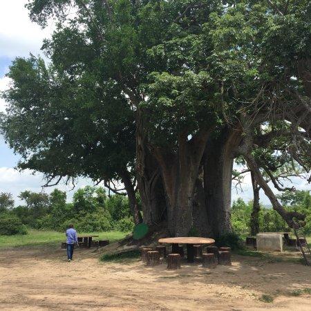 Morogoro, Τανζανία: photo9.jpg