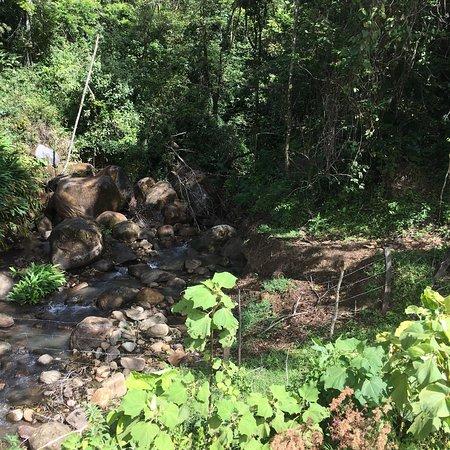 Horse Trek Monteverde: photo1.jpg