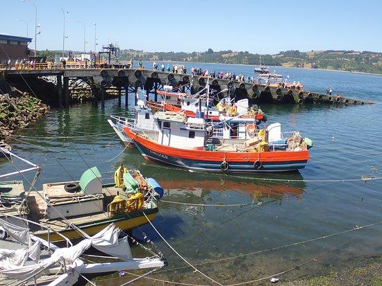 Foto de chiloe natural castro fishing boats tripadvisor for Delaware fishing charters