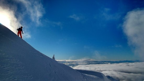 North Vancouver, Canadá: Winter guided snowshoe tours