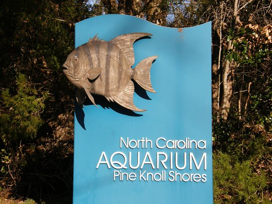 North Carolina Aquarium at Pine Knoll Shores: UPDATED 2018 ...