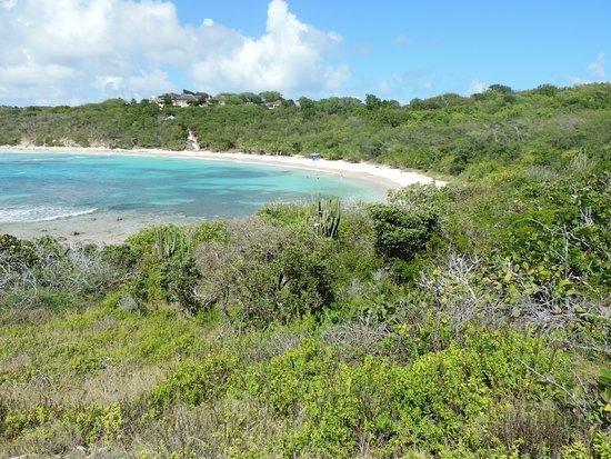 Half Moon Bay: spiaggia incontaminata