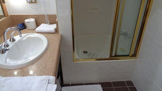 Wrest Point Motor Inn : Step Up Shower.