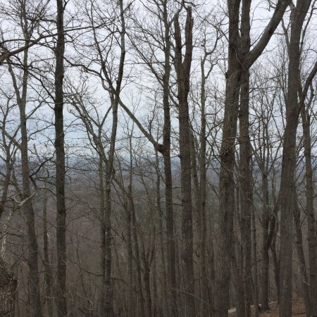 Morrow Mountain State Park: photo1.jpg