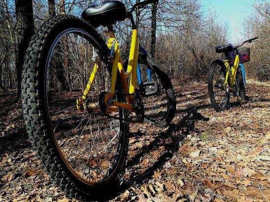 Venaria Reale, Italie : Rent Bike Cascina Prato Pascolo