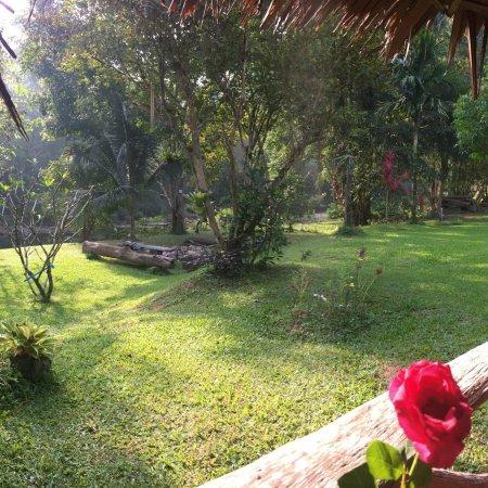 Phanom, Tailandia: photo1.jpg