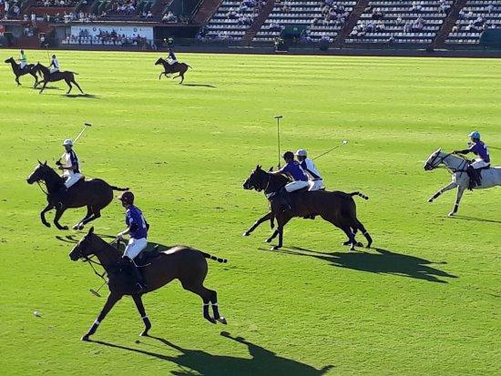 Campo Argentino de Polo: La Dolfina demoliendo a todos...