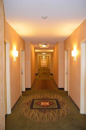 HILTON GARDEN INN COLORADO SPRINGS AIRPORT $126 ($̶1̶3̶9̶)   Updated 2018  Prices U0026 Hotel Reviews   TripAdvisor