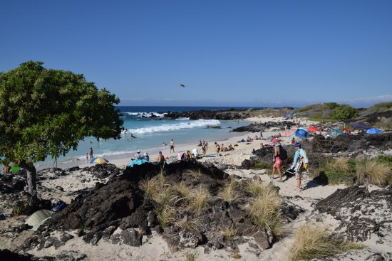 Manini'owali Beach (302950097)