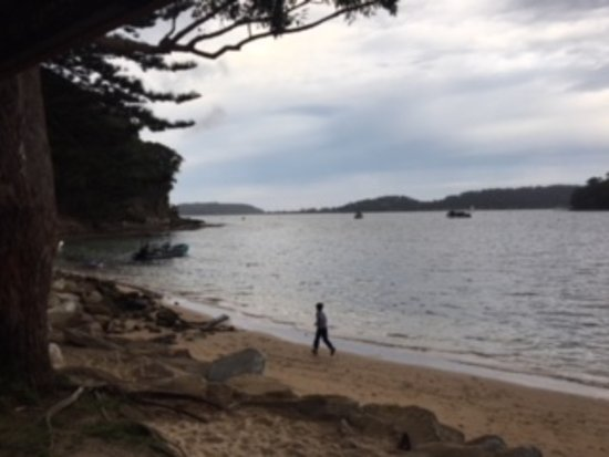 Pittwater, Australia: BBQ's are on the edge of the beach so it's a nice view while you're cooking dinner