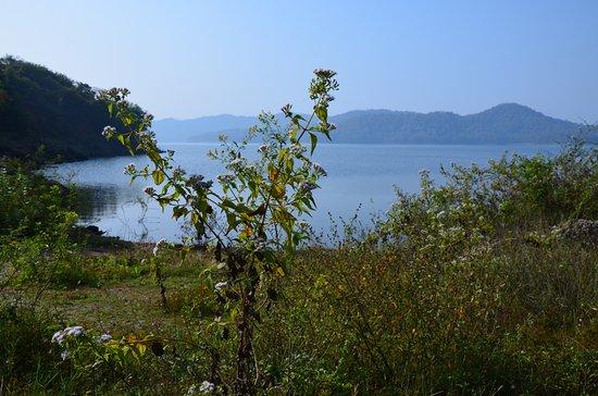 Bhadra, الهند: Bhadra reservoir