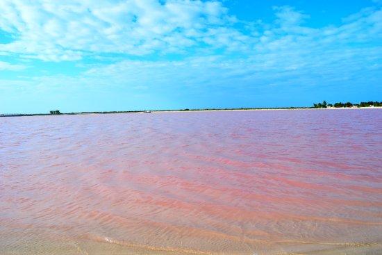 Rio Lagartos, México: Hermoso contraste del azul del cielo y el rosa del agua!