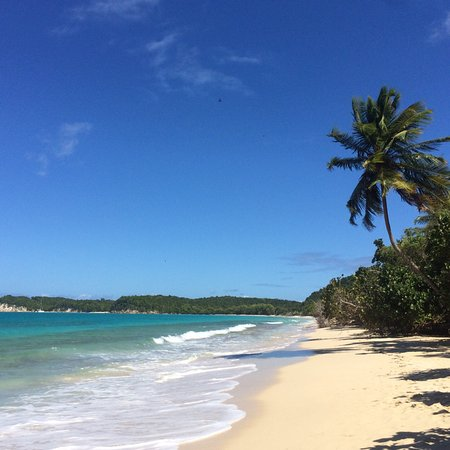What to do and see in Saint Louis, Guadeloupe: The Best Places and Tips