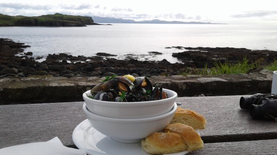 Isle of Eigg, UK: Mussles with cream for lunch at Galmisdale Bay Cafe on a lovely autumn day