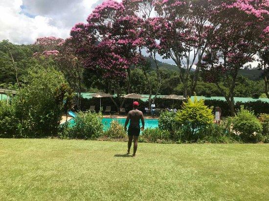 Nyanga, Ζιμπάμπουε: IMG-20180205-WA0017_large.jpg