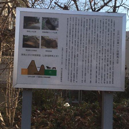 Nagareyama, اليابان: 野馬除土手跡