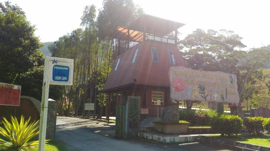 Tanjung Bungah, Malásia: Teluk Bahang Forest Eco Park
