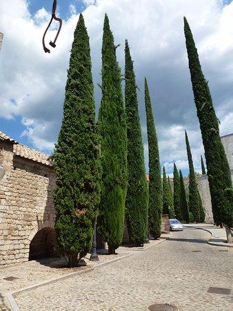 """Patronat Call de Girona: Зелёные """"штыки"""", вонзившиеся в небо Каталонии..."""
