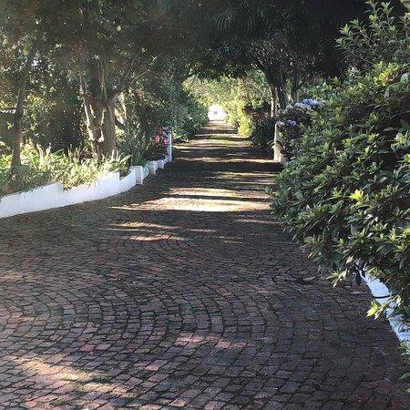 莫爾文莊園鄉村酒店照片
