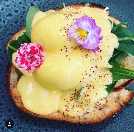 Sunshine Beach, Australie : Eggs Benedict