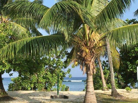 Chalets d'Anse Forbans: Ausblick von der Terrasse