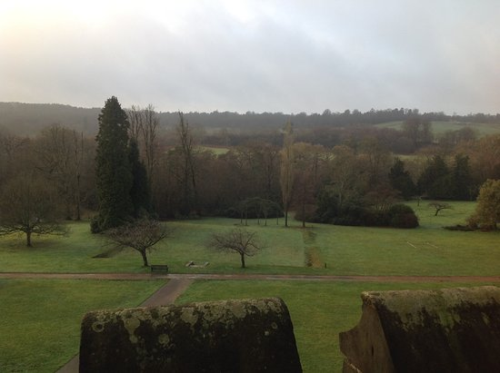 Wych Cross, UK: Morning view from our room