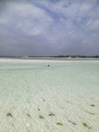 Watamu Beach : spiaggia di Jacaranda