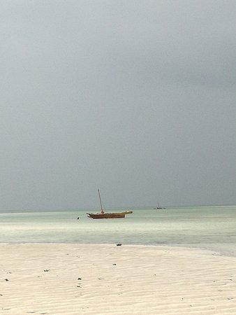 Watamu Beach : Jacaranda, bassa marea