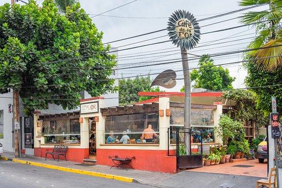 caf de la flor foto di caf de la flor chapultepec tijuana tripadvisor. Black Bedroom Furniture Sets. Home Design Ideas