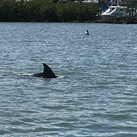Fort Pierce, FL: photo6.jpg