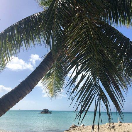 Buccaneer Beach Club: photo8.jpg