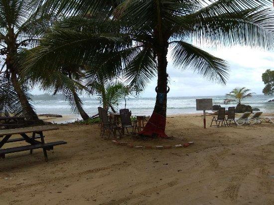 Red Frog Beach Island Resort & Spa Foto