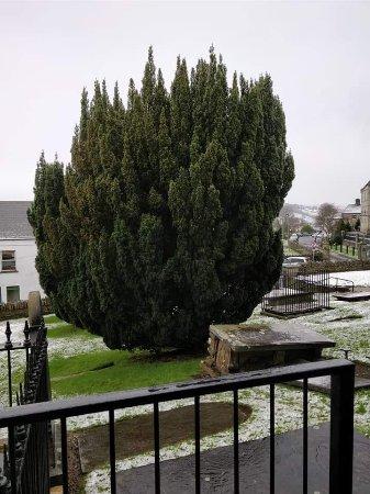 Letterkenny, Ireland: FB_IMG_1518712241303_large.jpg